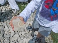 fossili 18.05 10