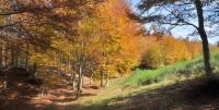 Casentino autunno 2011