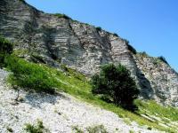 Cimaio, Monte Nerone 5.7.15