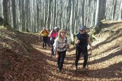 Foreste Casentinesi 31.10-01.11.2020