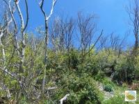 Monte Tenetra 01.05.17