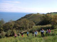 Monte San Bartolo, d\'autunno
