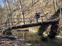 ponte-acquafredda-tdp