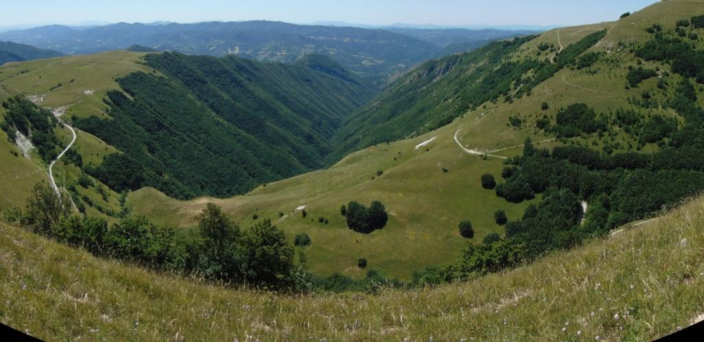 Panorama 5R